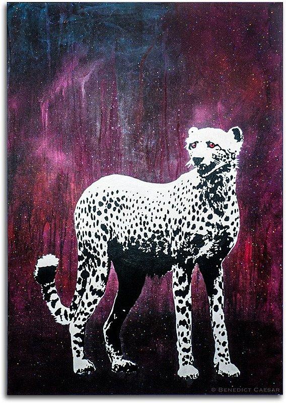 Snow White Cheetah
