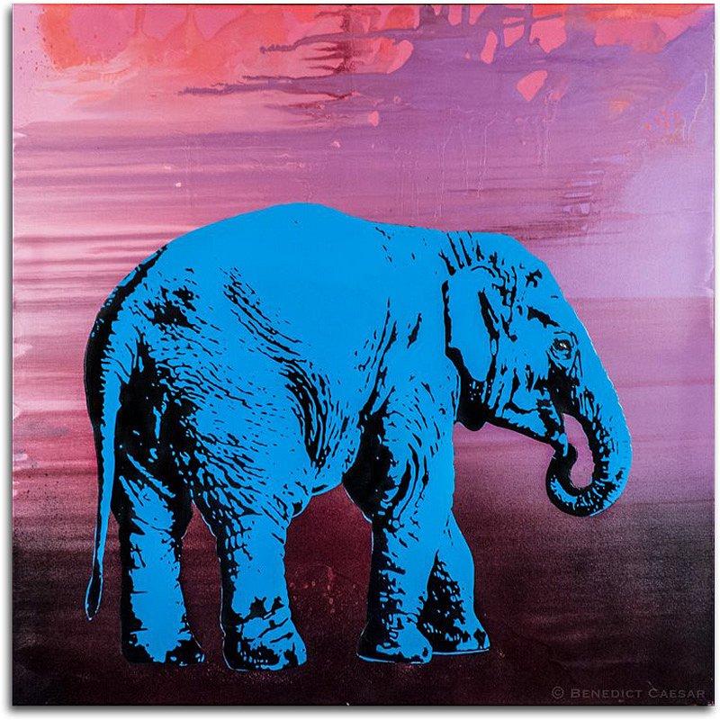 Blue Elephant Calf